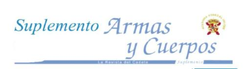 ARMAS y CUERPOS