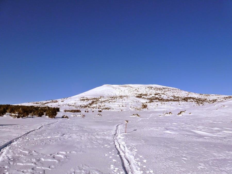 Monte Oturia