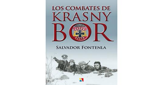 combate-krasny-bor-550